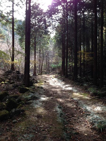 yatarousawa005.jpg