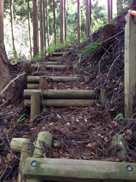 yatarousawa028.jpg