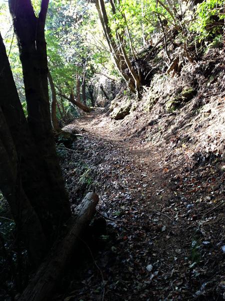 yatarousawa045.jpg