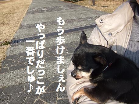 豆森公苑散歩抱っこ1-16