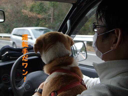 りん太郎車中2