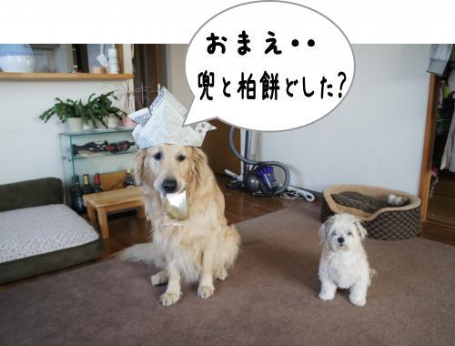 1-1_convert_20120430085714.jpg