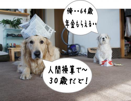10_convert_20120430090254.jpg