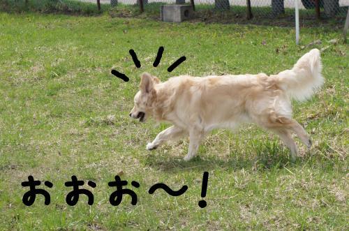 1_convert_20120429143303.jpg