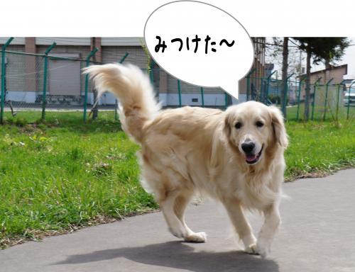 2_convert_20120429143336.jpg