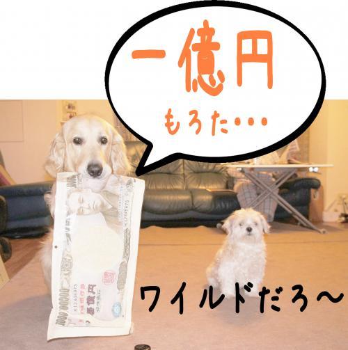 2_convert_20120604153615.jpg