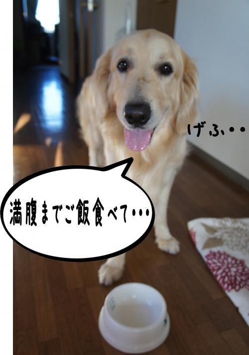 3_convert_20120723121327.jpg