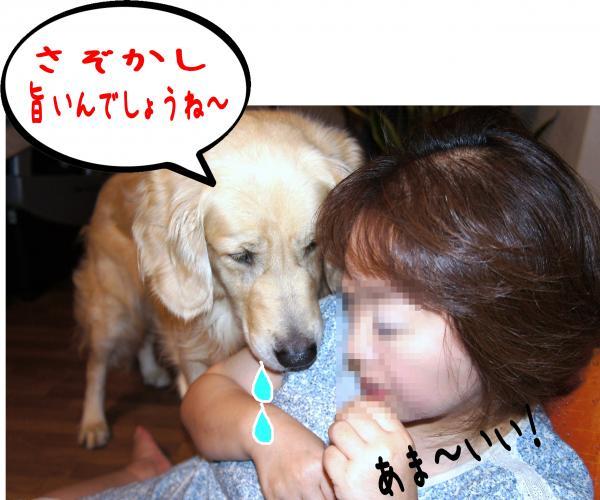 3_convert_20120904134203.jpg