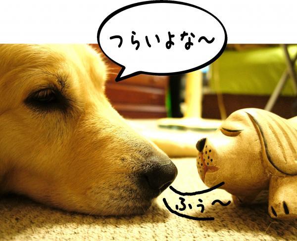 3_convert_20121001185447.jpg