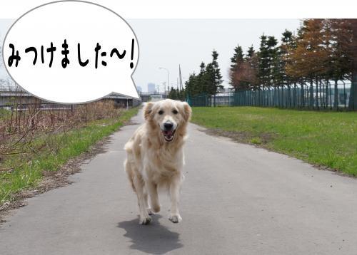 4_convert_20120429143453.jpg