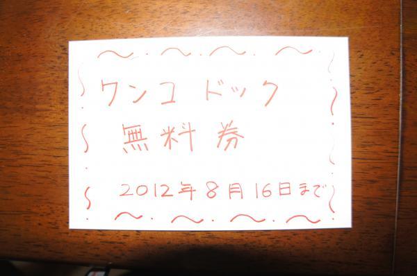 DSC01539_convert_20120816213512.jpg