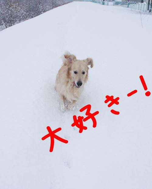 hasiru6_convert_20130105091402.jpg