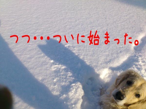 ice1_convert_20130110173358.jpg