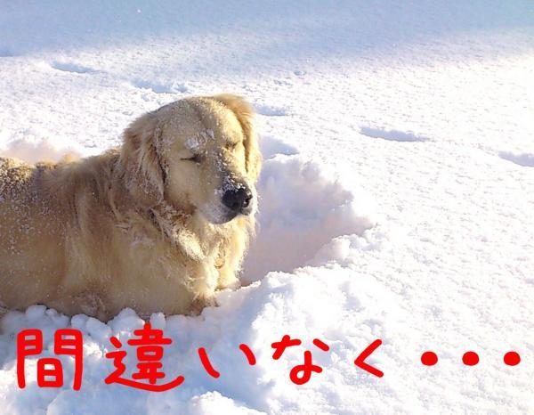 ice3_convert_20130110173453.jpg