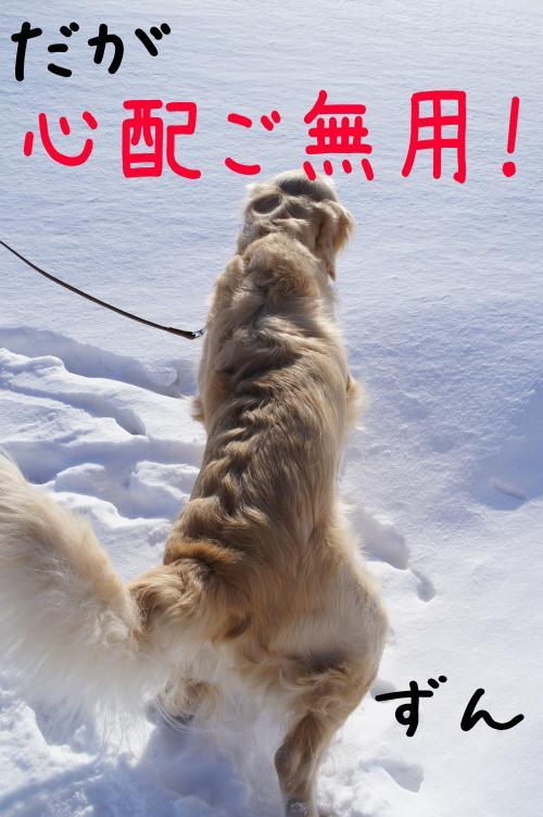 ice8_convert_20130110173922.jpg