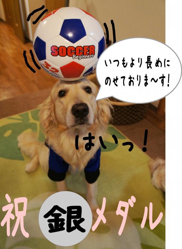 image8_convert_20120812091548.jpg