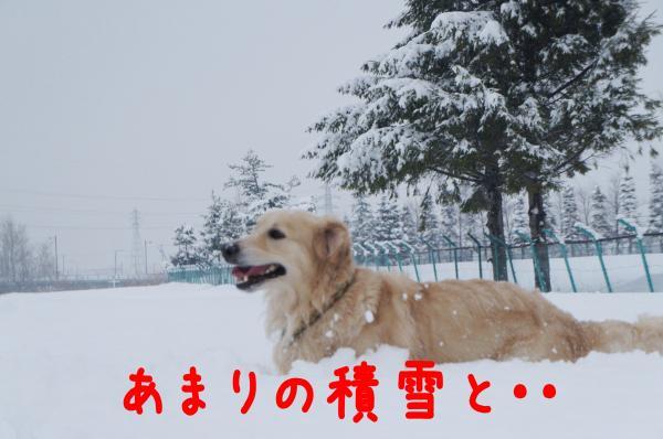 yuki2_convert_20121216231156.jpg
