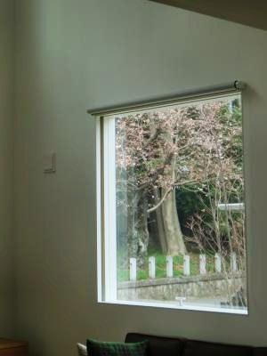 3.27 窓からの桜