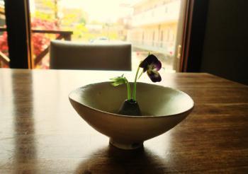 5.6 hidameri cafe4
