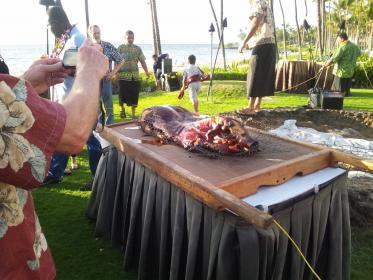 Luau 豚