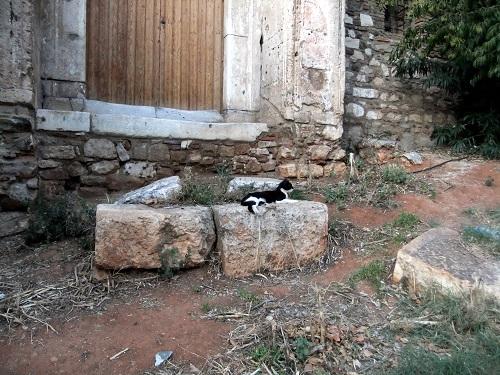 アテネ_風の塔付近