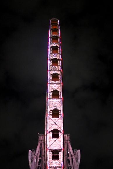 201210nv3.jpg