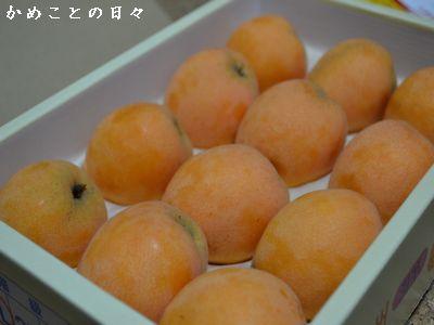DSC_0062-biwa.jpg