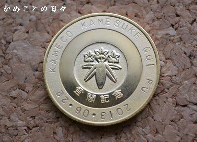 DSC_0442-coin.jpg