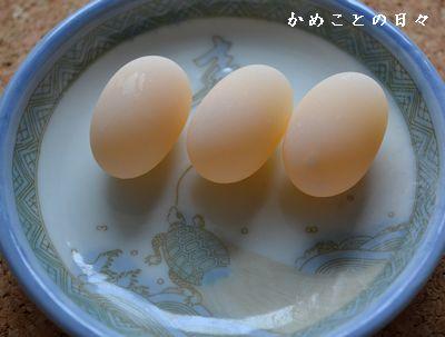 DSC_0666-egg.jpg