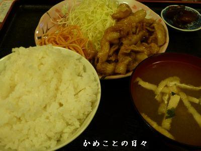 P1020329-hachi.jpg