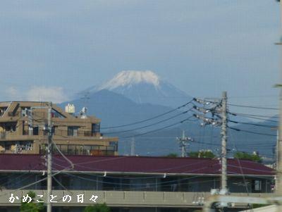 P1040296-fuji.jpg
