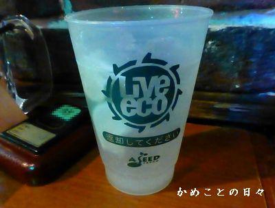 P1040573-gin.jpg