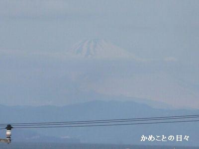 P1660682-fuji.jpg
