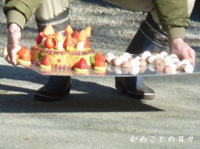 P1840043-cake.jpg