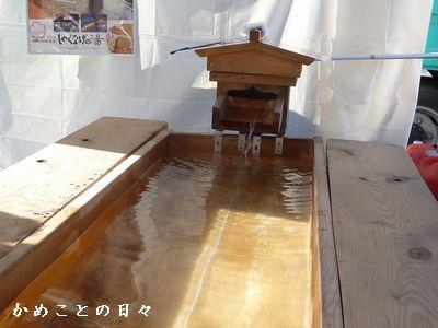 P1850170-yu.jpg