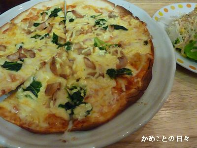 P1890366-pizza.jpg