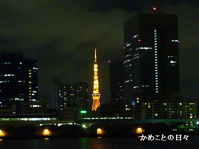 P1900046-tower.jpg