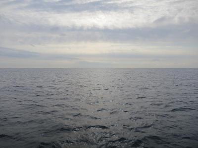 01-09 今日の海