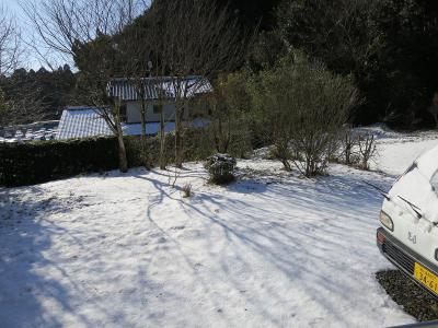 01-15 まだ雪