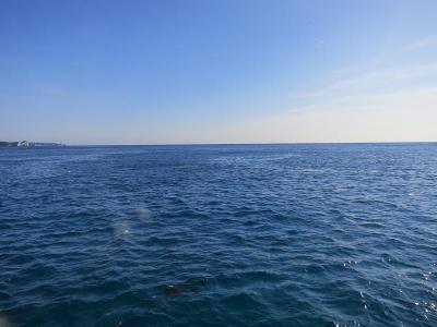 01-17 今日の海