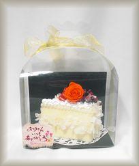 H25 1500 cake
