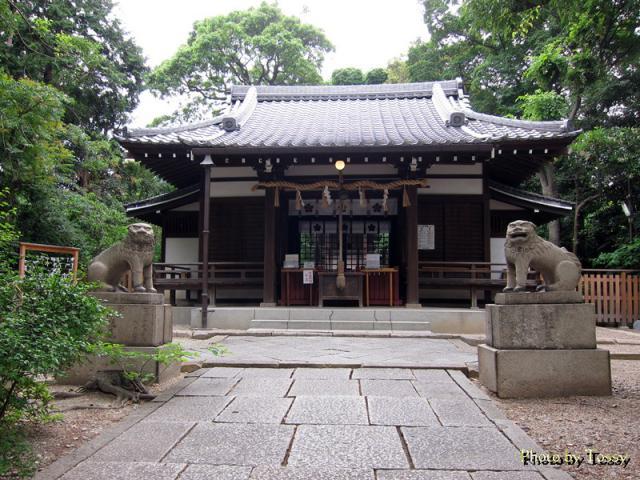 安居神社 本殿