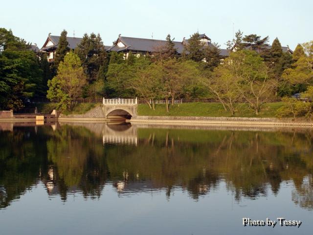荒池から奈良ホテルを望む