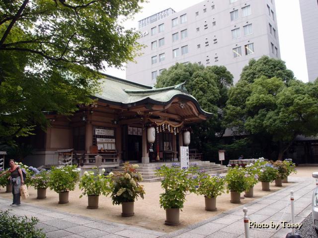 坐摩神社 本殿