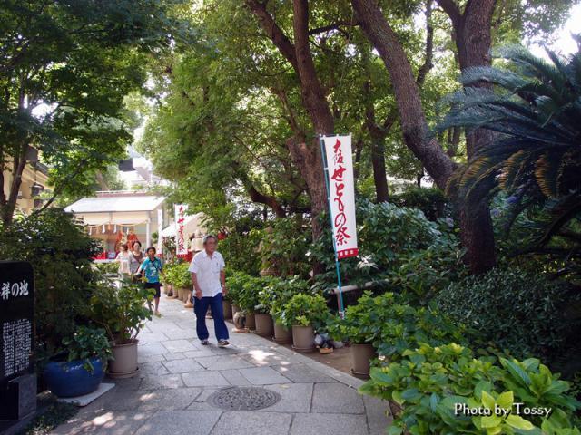 陶器神社への小道