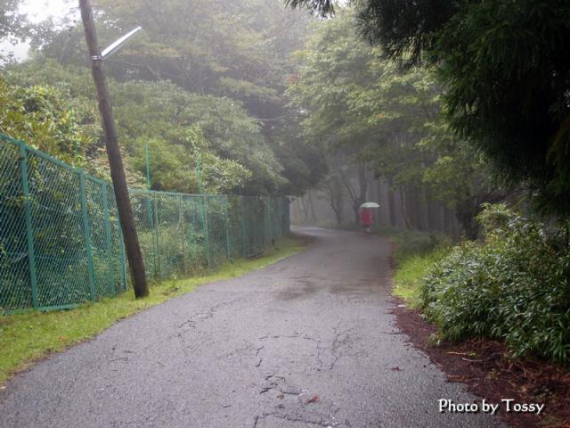 XZ1_20120918_048.jpg