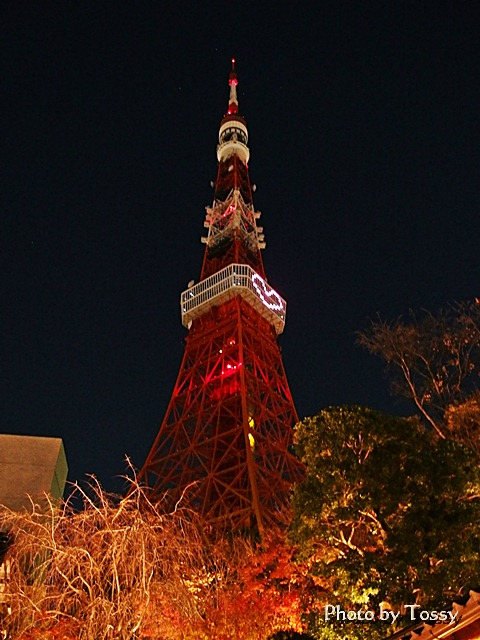 ハートに明かりをともした東京タワー