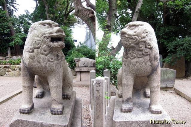 安居神社 狛犬