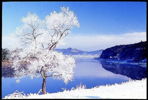 冬の北上川500