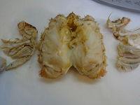 毛蟹捌き方(蒸し・茹で)12